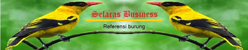 Selaras Business