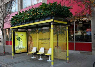 absolut lemon drop bus shelter ad
