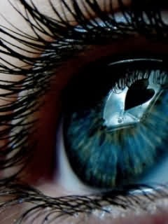 free hd wallpaper download blue eyes wallpapers