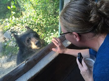 Bear Greets Alicia at Zoo and Brew