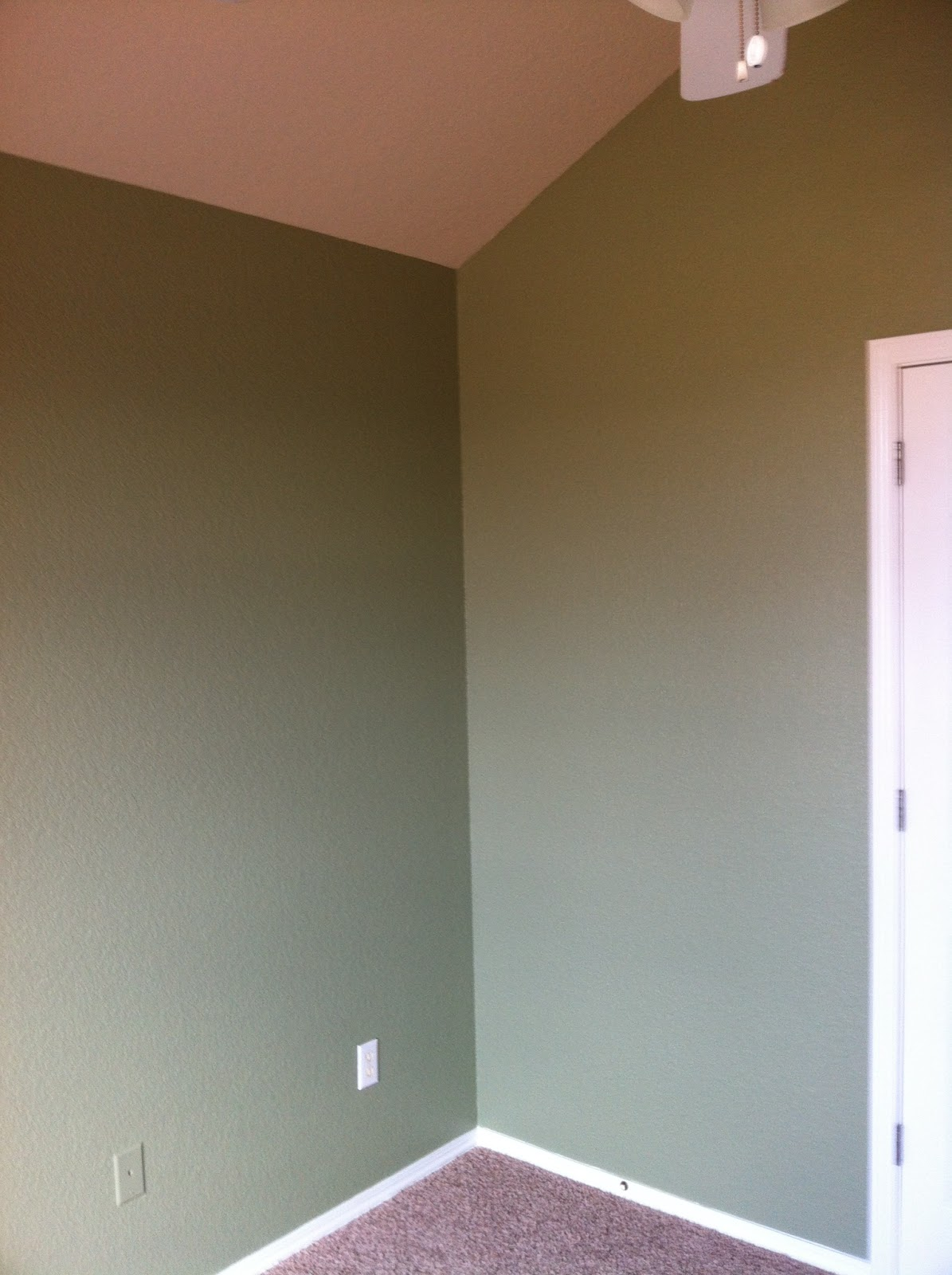 Lasun 39 s painting home interior painting sage green bedroom for Sage green interior paint