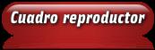 Cuadro Reproductor