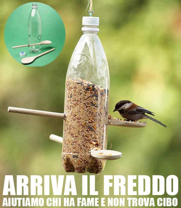 dare+da+mangiare+agli+uccellini.jpg (600×692)