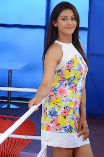 Actress Pooja Jhaveri Latest Picture Shoot Gallery in Floral Short Dress  038