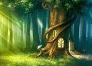 El bosque encantado (I)