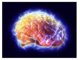 otak error