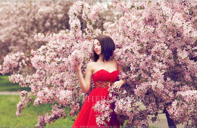 цветущая сакура фотосессия