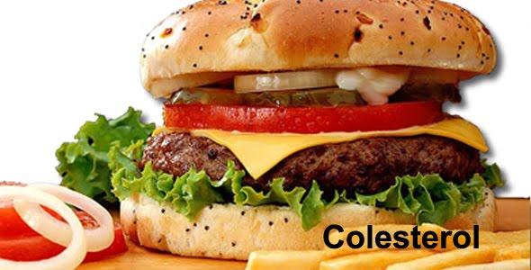 Bioquímica do colesterol, õmega 3, ômega 6 e gordura trans