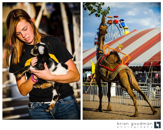 Photographing Carnival Rides At Night ... night. Here are so...