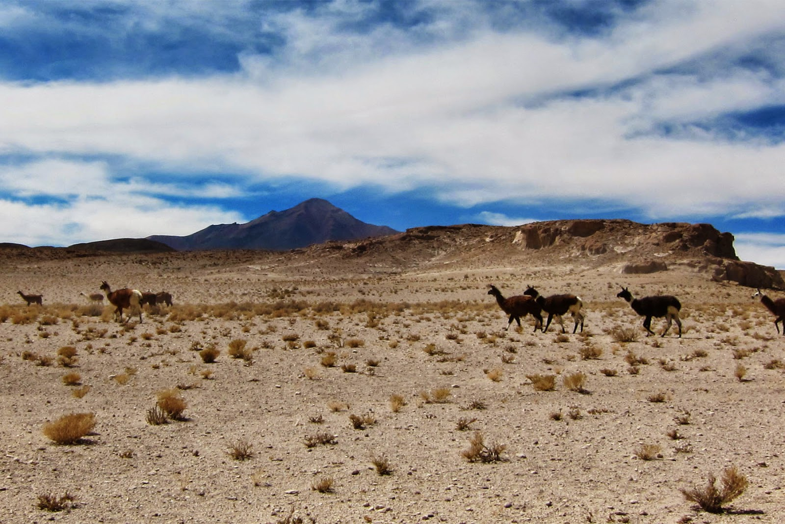 Salar de Uyuni (Salt Flats), Bolivia 2014