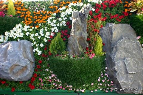 vertical garden solusi untuk rumah minimalis | model