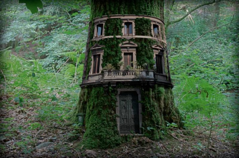 Projectrelooking la casa sull 39 albero - La casa sull albero mobili ...