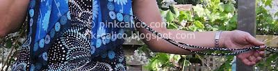 Pink Calico: Blue Print Dress