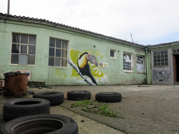Street Art Murals By Martin Whatson In Stavanger Norway For Nuart Urban Art Festival. toucan