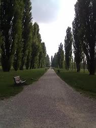 Il parco Ducale