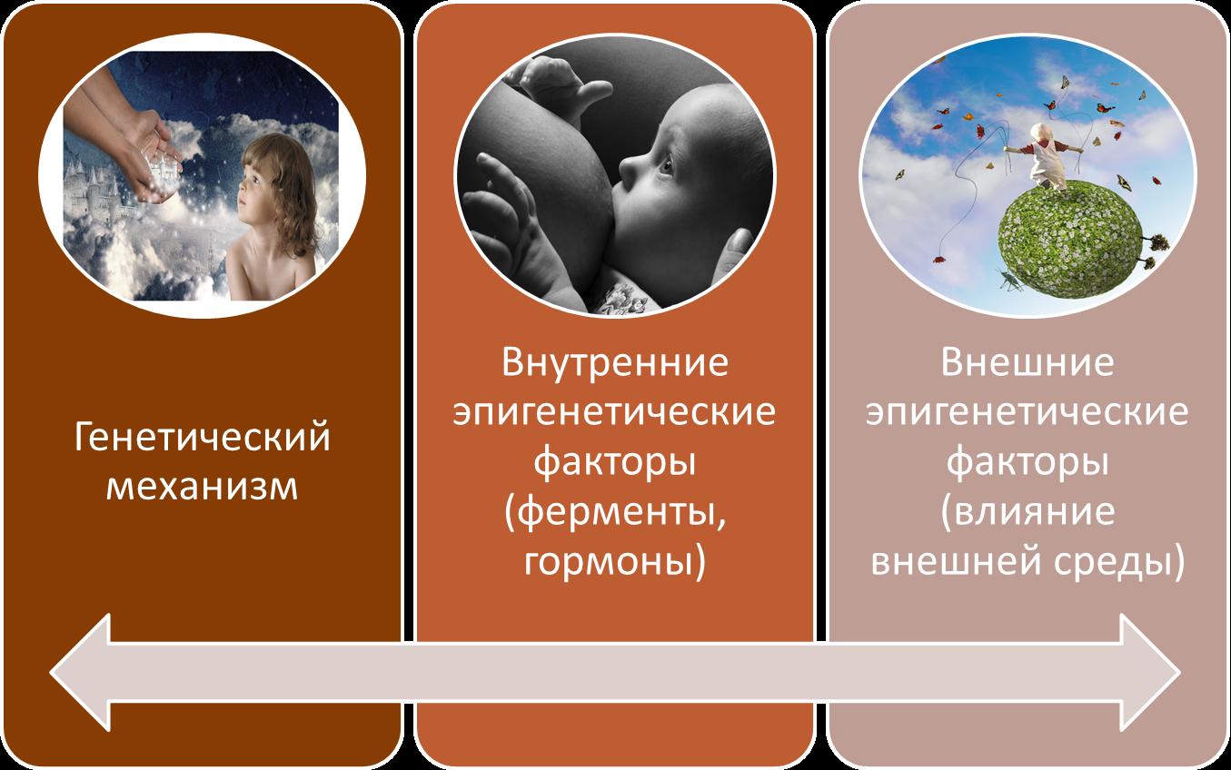 Феминизация в гинекологическом кресле