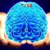هل فعلاً معظم الناس يستخدمون 10% من قدرة المخ ؟ خرافات علم النفس