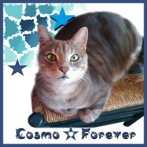 RIP COSMO