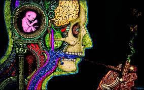 Psicodelia e Estudos Psicodélicos