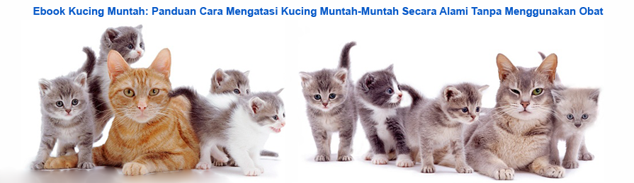 Ebook Kucing Muntah