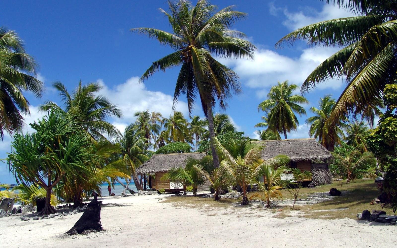 Tropical beach huts photos