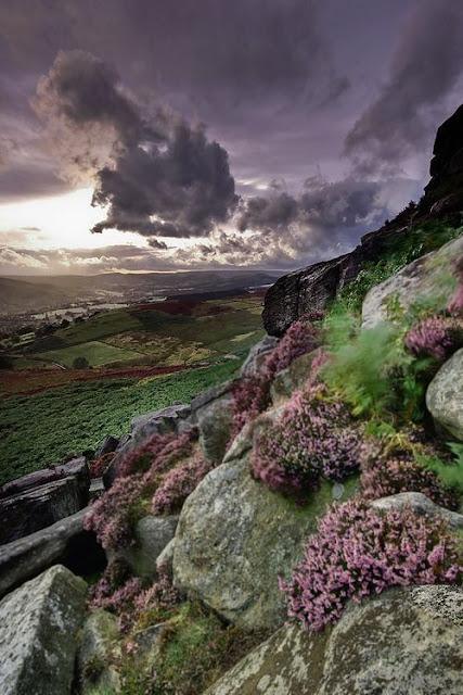 Yorkshire Moors.