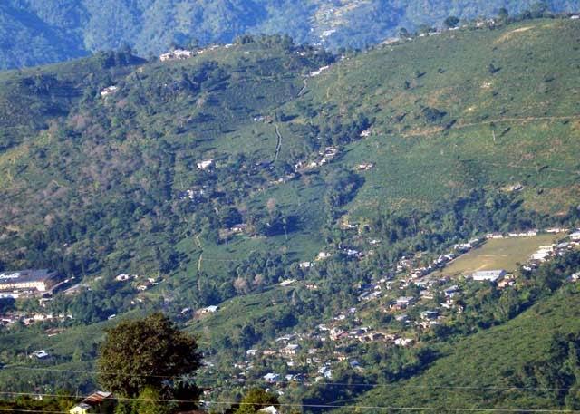 Ambootia tea estate Vs Cinchona Plantation in land controversy