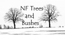 NF Trees & Bushes