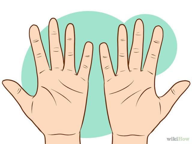 wikihow lignes de main