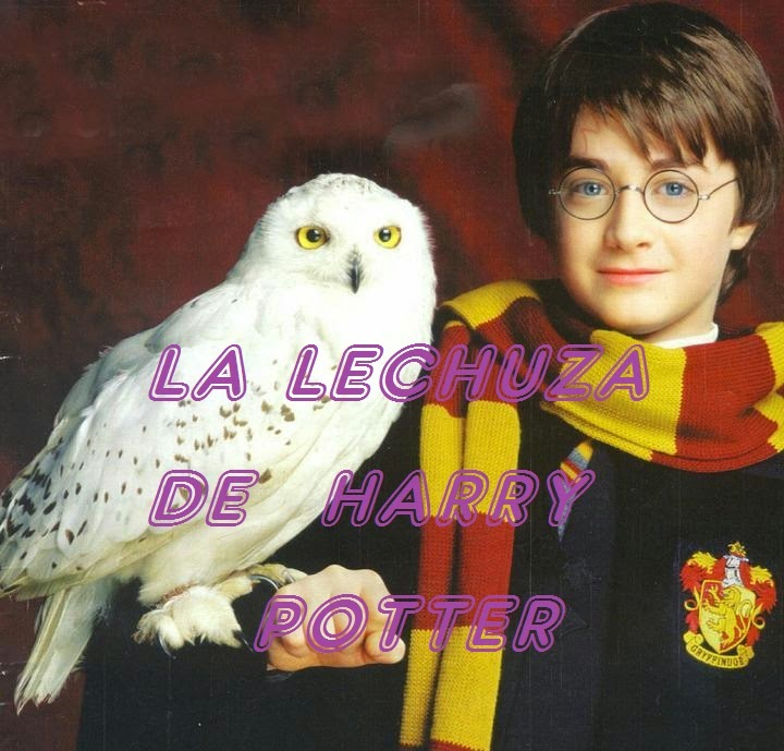La Lechuza De Harry Potter