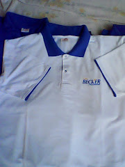 Camisas Polo Verão