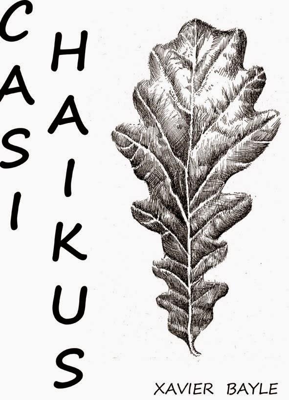 Casi Haikus (Poesía) 2014