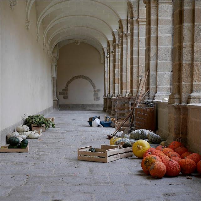 Cucurbitacées attendant d'être placées au bon endroit pour décorer le cloître Saint-Sauveur