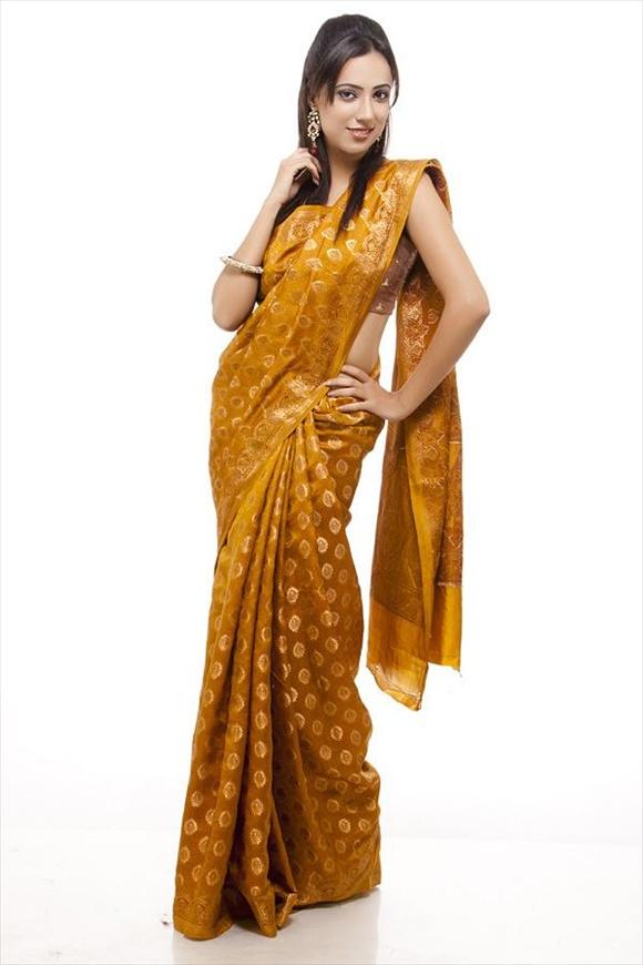 Amber Dupion Banarasi Saree
