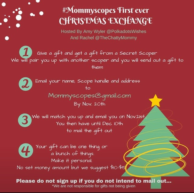 The Chatty Mommy: MommyScopes Christmas Exchange