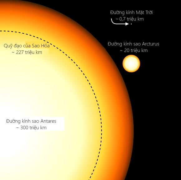 So sánh kích thước giữa đường kính Mặt Trời, sao Arcturus, sao Antares và quỹ đạo của Sao Hỏa. Theo Wikimedia Commons.