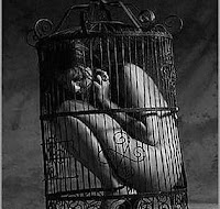 nude woman in cage