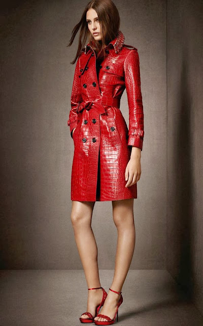 Burberry Stylish Collection 2013-14 For Women Clothing