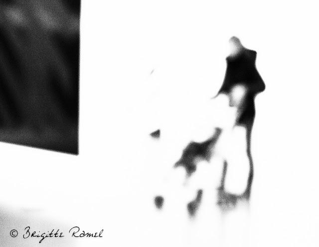Exposition Sol Lewitt