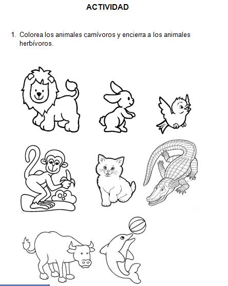 Figuras de animales carnivoros y herbivoros - Imagui