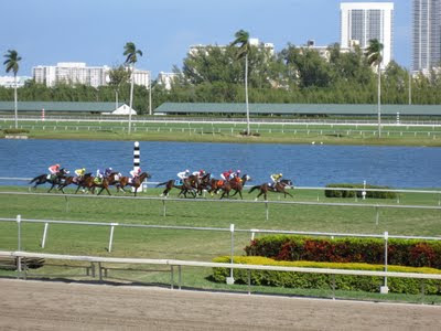 Gulfstream Racetrack Hallandale Beach Florida