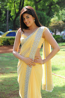 Pranitha in Spicy Yellow Saree transparent Yellow Blouse Ultra Spicy Beautiful Pranitha