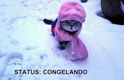 Status: Congelado.