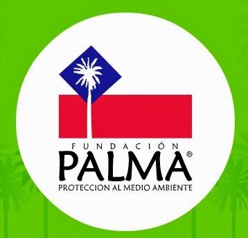 Fundación Palma