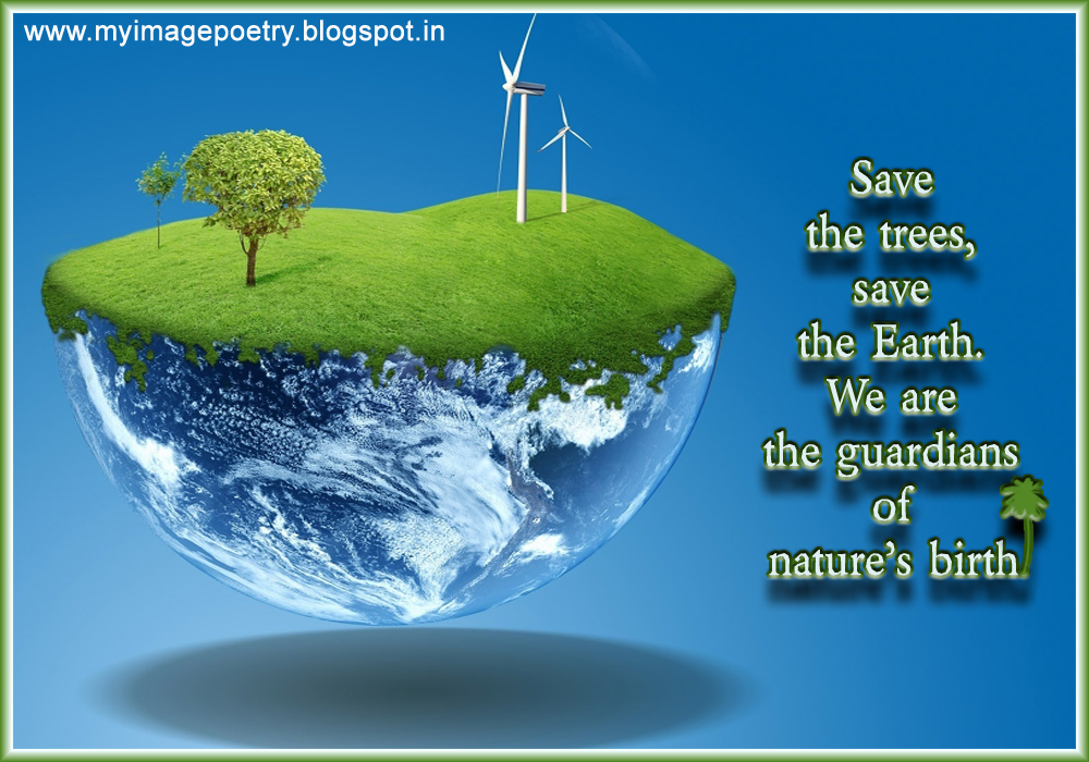 Save Trees Posters And Slogans Wwwimgkidcom The