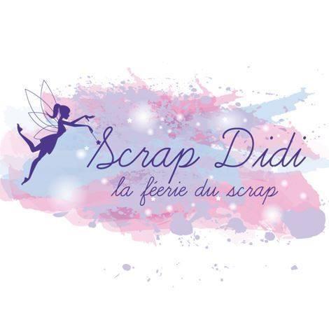 DT Scrap Didi