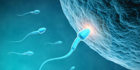 11 Hal yang membuat jumlah sperma menurun