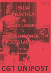GUIA PRÁCTICA DE SALUD LABORAL Y PREVENCIÓN DE RIESGOS LABORALES DE CGT UNIPOST