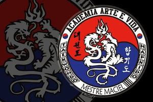 Academia Arte e Vida